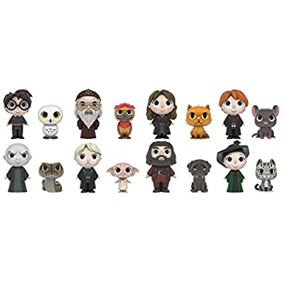 Funko Mystery Mini: Harry Potter Action Figure - One Mystery: Funko Mystery Minis:: Toys & Games