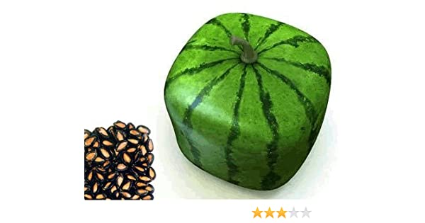 Pictures Of Watermelon With Seeds