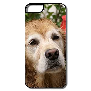 IPhone 5S Cases, Golden Retriever Portrait White/black Cases For IPhone 5S