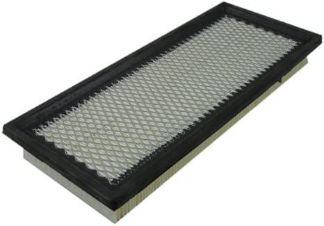 Ecogard XA5387 Air Filter