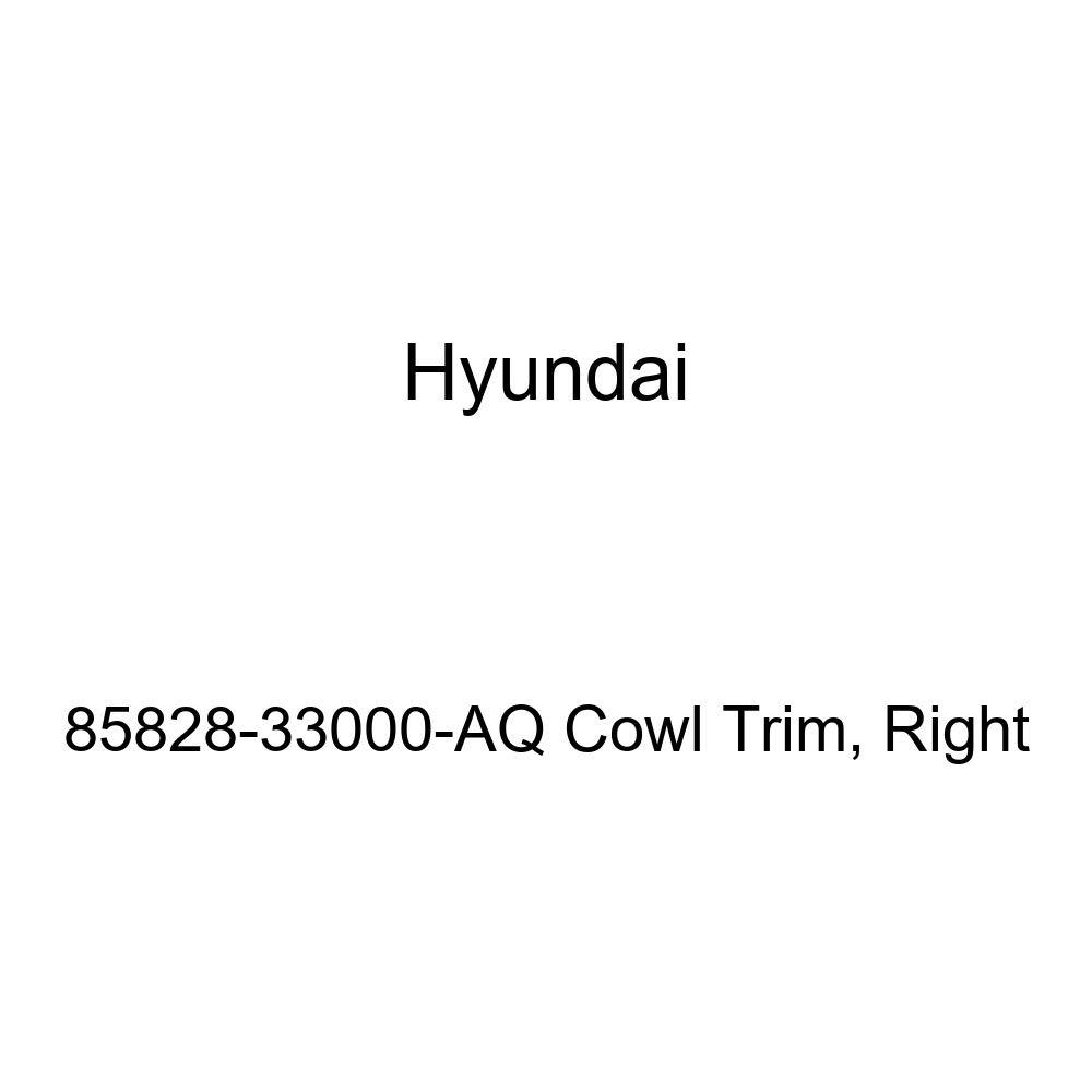 Genuine Hyundai 85828-33000-AQ Cowl Trim Right