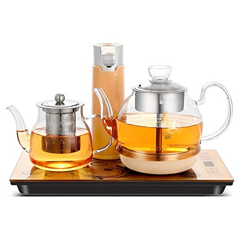 Automatic Steam Boiled Tea Black Tea Special Household Glass Spray Electric Tea Stove for home by TTDY