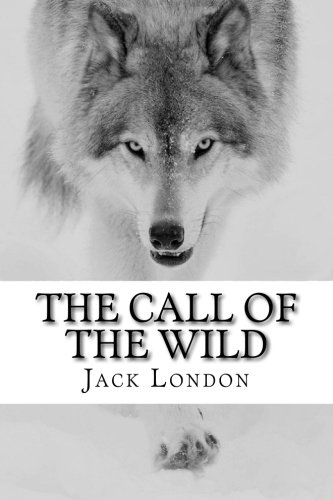 "Jack London's novel ""The Call Of The Wild"" Essay Sample"