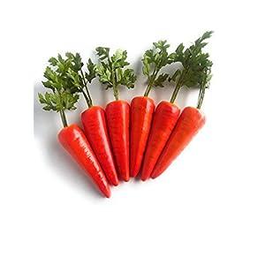 Mezly 6pcs Simulation Carrots Artificial Vegetables Home & Kichen Decorations 35