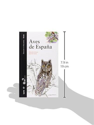 Aves de España (Descubrir la Naturaleza): Amazon.es: De Juana, Eduardo, Varela, Juan: Libros