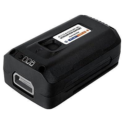 Snow Joe 5 Ah Lithium Battery for iON Series