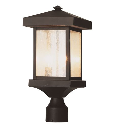 Trans Globe Lighting 45643 WB Outdoor Santa Cruz 13