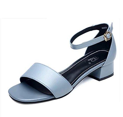 FAFZ Sandalias Sandalias Gruesas Sandalias Cómodas Sandalias Moda Sandalias Sandalias Planas,Sandalias de Moda (Color : B, Tamaño : 35) A