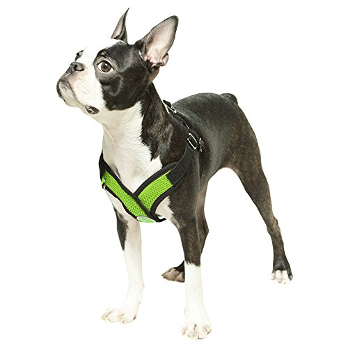 Image of Gooby Choke Free Step-in Comfort Dog Harness, Green, X-Large