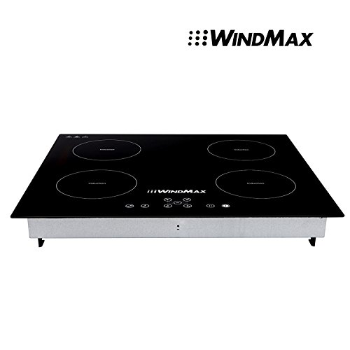 portable 4 burner induction - 1
