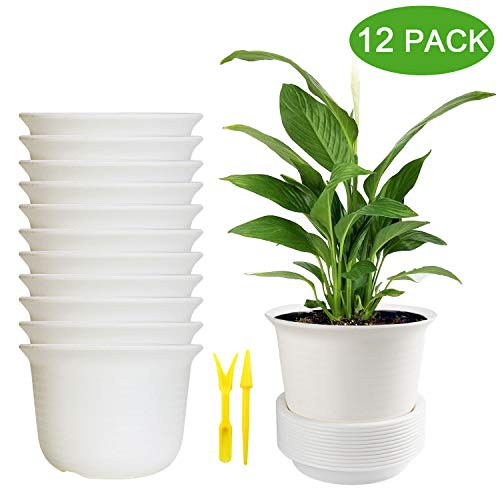 Plastic Flower Pots, Brajttt 12 Sets Pots with Drainage Hole, Planters with Saucers for Modern Indoor Plants, Orchid, Herbs, Succulents, Cactus, and Seeding Nursery (White)