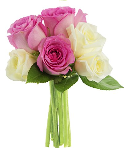 Kabloom Sugar Cookie Pink and White Roses (Half Dozen) - Without Vase (Flowers Cookie Delivery)