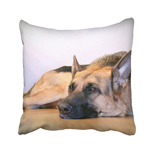 Tarolo Decorative Cute Design Standard Print Cute Pet Doggy German Shepherd Dog Diy Pillowcases Protector gift for kids Size 16x16 inches(40x40cm) One Sided