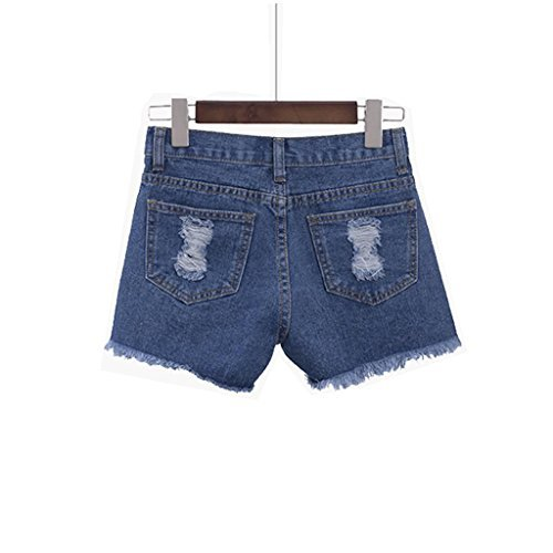 Yoleo Women's Denim Shorts with High-waist Rose Embroidered (S)