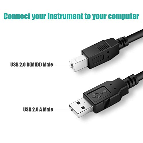 Ancable 6-Feet USB B MIDI Cable for Instruments, USB 2.0 Type A to Type B Printer Cable Cord Compatible with Piano, Midi Controller, Midi Keyboard, Audio Interface Recording, USB Microphone and More