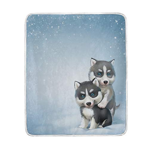(GOEPULY Lovely Dog Huskey Throw Blanket Ultra Soft Warm Blanket Fuzzy Bed Blanket for Sofa Recliner Bed Camping and Picnic)
