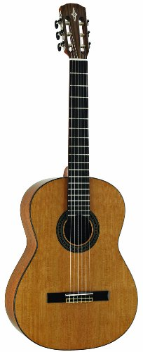 Alvarez AC65 Acoustic Guitar - Alvarez Guitars