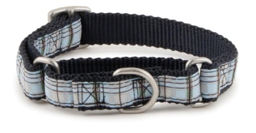 PetSafe Fido Finery Martingale-Style Dog Collar, 1-Inch, Medium, Summer Plaid