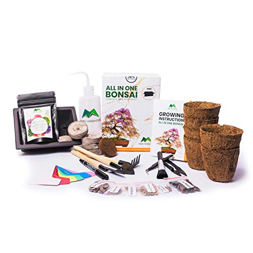 MABES WAREHOUSE Bonsai Starter Kit - Grow Beautiful 6 Type Plants of Bonsai Tree from Seed, Make Your Own Live Indoor Plants, Premium Gift with Bonsai Tool Kit and Growing Instruction for Beginner