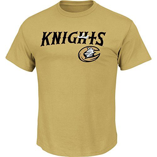 tte Knights T-shirt (Adult Small) ()