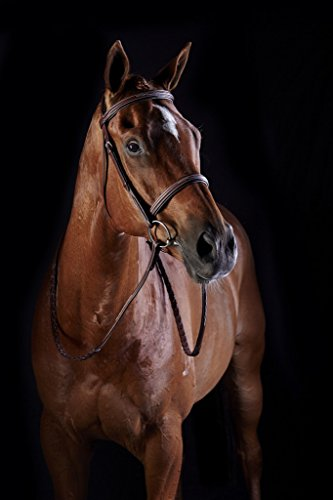 (Collegiate Weatherbeeta Comfort Crown Fancy Stitched Raised Cavesson Bridle Brown Cob )