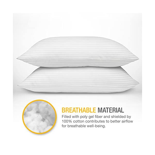 DreamNorth-PREMIUM-Gel-Pillow-Loft-Pack-of-2-Luxury-Plush-Gel-Bed-Pillow-For-Home-Hotel-Collection-Good-For-Side-and-Back-Sleeper-Cotton-Cover-Dust-Mite-Resistant-Hypoallergenic-Queen-Size