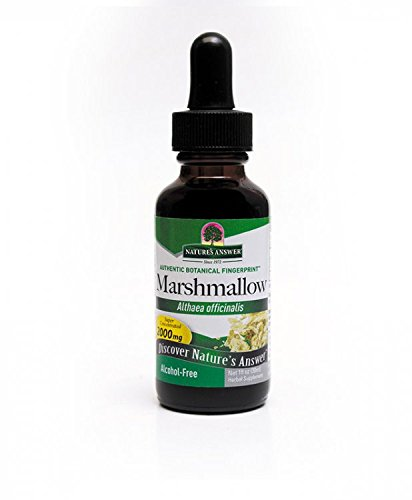 Marshmallow Root Extract Alcohol (Nature's Answer Alcohol-Free Marshmallow Root, 1-Fluid)