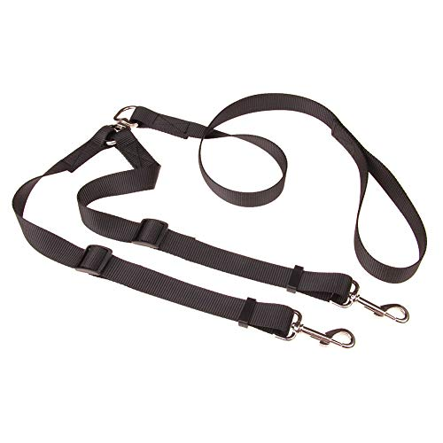Walmeck Double Dog Leash Dog Pet Traction Rope Thickening Section Plain Nylon One for Two Double Head Pull with Double Dog Pull Belt
