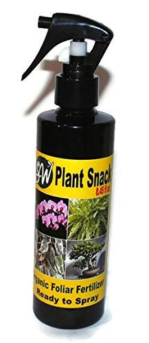 Phalaenopsis Spray (Plant Snack. Foliar Mist Plant Spray with Organic Fertilizer > Phalaenopsis Moth Orchid Cymbidium Cattleya Dendrobium Orchid Plants. Get it in 3-9 Days.)