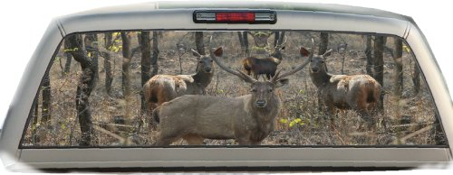 (Sambar Deer- 17 Inches-by-56 Inches- Compact Pickup Trucks- Rear Window Graphics)