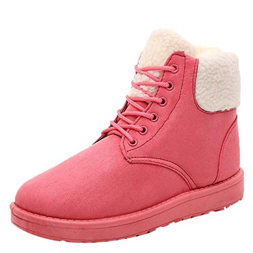 Peize Winter Women Classic plush Warm Insole Ankle Snow boots Ladies Casual Solid Lace-Up Shoes