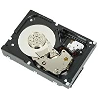 Dell-IMSourcing 1 TB 3.5 Internal Hard Drive, Near Line SAS (NL-SAS) - 7200 rpm 342-0450