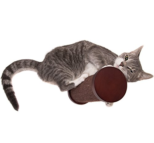Cat Shelf Step by Art of Paws | Wall Mounted Cat Steps and Scratching Post | Perfect Cat Perch with Wood Cat Post with Sisal Carpet | Part of the Art of Paws Cat Shelves System