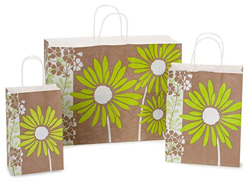 Assortment of Kraft Brown with Painted Daisies Paper Shopping Bags (125 Bags) - NO Tissue Paper -