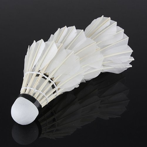 Well-Goal 3 x Training White Goose Feather Shuttlecock Birdies Badminton Ball Game Sport by Well-Goal