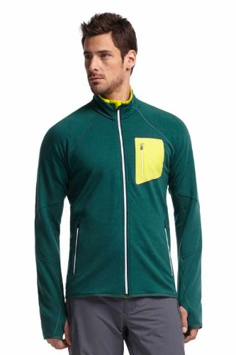 Icebreaker Herren Jacke Fleece Atom Long Sleeve Zip