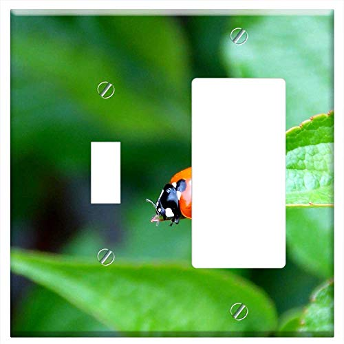 - 1-Toggle 1-Rocker/GFCI Combination Wall Plate Cover - Ladybug Beetle Garden Red Spotted Leaf Nature