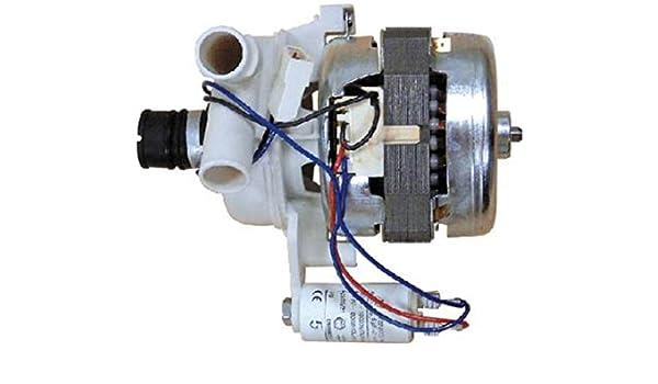 Ariston - Motor lavavajillas Ariston Indesit 3 bocas: Amazon.es ...