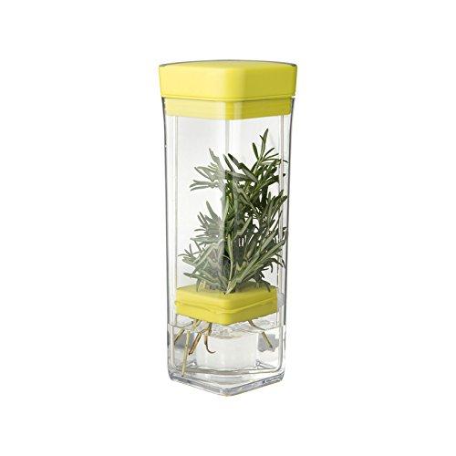Chefn 102-985-337 Fresh Herb Storage Clear