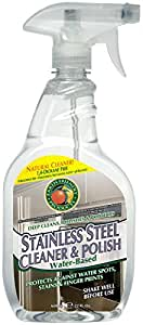 Earth Friendly Stainless Steel Cleaner and Polish -- 22 fl oz