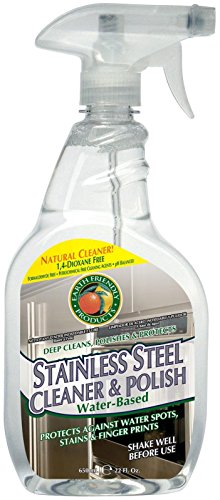 ECOS Stainless Steel Cleaner & Polish - 22 oz