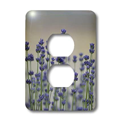 3dRose lsp/_54458/_6 Field of Lavender Flowers Outlet Cover