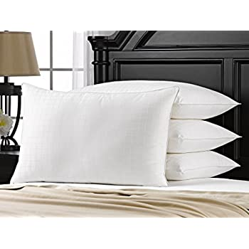 Amazon Com Ella Jayne Home Soft Queen Size Bed Pillows 4