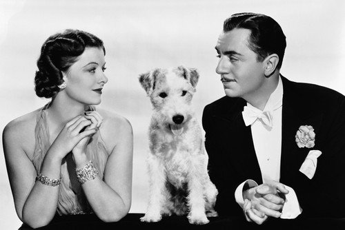 Myrna Loy William Powell and Asta the pooch in After the Thin Man 24x36 Poster Silverscreen