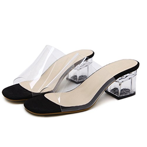 GIY Womens Low Block Heel Slide Sandals Lucite Clear Anti-Slip Slip On Chunky Heels Sandal Black