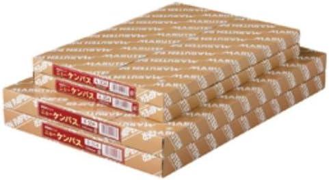 ケント紙ニューケンパス厚口B4 B504 190-158