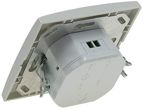 ChiliTec 21251 Detector de Movimiento - Sensor de Movimiento