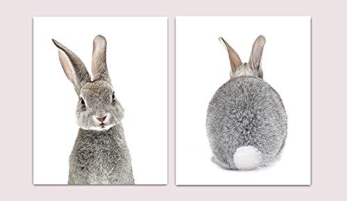 Set of 2 Baby Bunny Front Back Photographic Print, Nursery Decor, Nursery Art, Baby Nursery Decor, Baby Kids Room, Wall Art, 8x10, UNFRAMED Bunny Nursery Decor