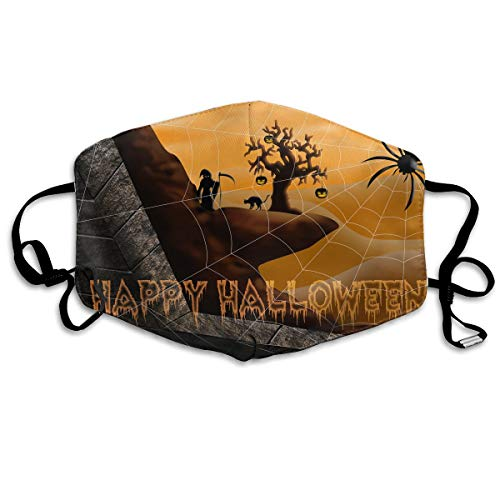 Hongao Anti Dust Pollution Mask Happy Halloween Spider Reusable Washable Earloop Face Mouth Mask for Men -