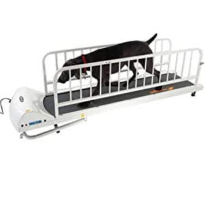 GoPet Treadmill Petrun 725 for Large Dogs (<176lbs)